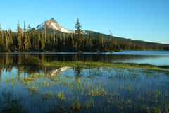 Oregon-Portraits Lizenzfreie Stockfotografie