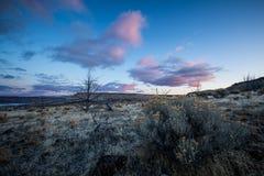 Oregon pustyni wschodu słońca centrala Oregon Zdjęcia Royalty Free