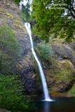 Oregon's Horsetail Falls Stock Photography