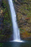 Oregon's Horsetail Falls Royalty Free Stock Images