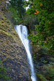 Oregon's Horsetail Falls Royalty Free Stock Photo