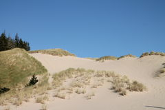 Oregon sand dunes Stock Image