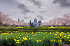 Oregon State Capitol Building with Spring Flowers Royalty Free Stock Images