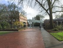 Oregon State University student mall, springtime Royalty Free Stock Image