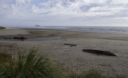 Oregon strand Royaltyfria Foton