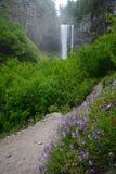 Oregon Tamanawas waterfall Royalty Free Stock Images