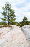 Oregon Trail Ruts State Historic Site stock photos