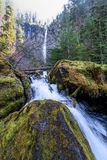 Oregon-Umpqua National Forest-Rogue-Umpqua Scenic Byway-Watson Falls Stock Image