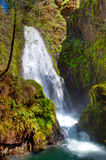 Oregon-Umpqua National Forest-Rogue-Umpqua Scenic Byway-Watson Falls Stock Images