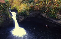 oregon vattenfall Royaltyfri Fotografi
