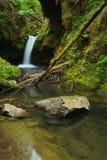 oregon vattenfall Royaltyfria Bilder