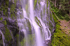 Oregon water fall Royalty Free Stock Photos