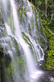 Oregon water fall. Abstract view of Proxi falls in the Oregon cascades during the summer of 2009 Stock Photography