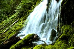Oregon water fall Royalty Free Stock Image
