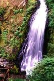 Oregon waterfall Royalty Free Stock Photo