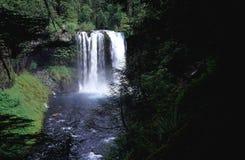 Oregon waterfall royalty free stock photography