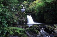 Oregon waterfall stock photos