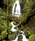 Oregon waterfall. Portrait of Bridge creek falls along highway 58 in Oregon Stock Photography