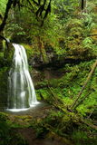 Oregon waterfall Royalty Free Stock Image