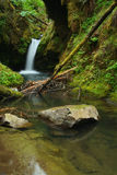 Oregon waterfall Royalty Free Stock Images