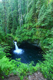 Oregon waterfall. Punchbowl waterfall is located in Oregon in the Columbia river gorge area Stock Image