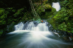 Oregon Waterfall in Pacific Northwest Royalty Free Stock Photos