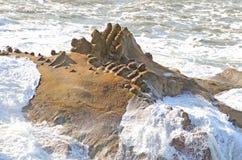 Oregon Waves Royalty Free Stock Image