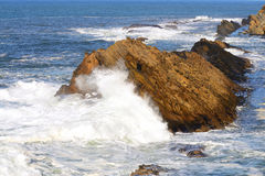 Oregon Waves Stock Image