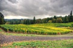 Oregon wieś Zdjęcia Royalty Free