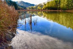 Oregon-Winter-Farben stockbild