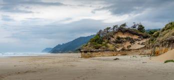 Oregon wybrzeża plaża fotografia royalty free