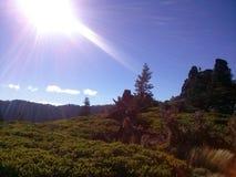 Oregonian-Glück lizenzfreie stockfotografie