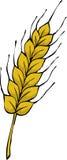 Oreille de blé Photos stock