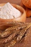 Oreille de farine de wheatwith Photographie stock libre de droits