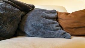 Oreillers confortables dans le mensonge gris et brun sur le sofa Photo stock