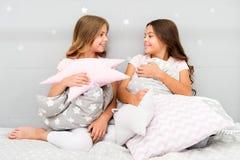 Oreillers mignons d'enfants qu'ils aimeront caresser Trouvez les oreillers décoratifs et ajoutez l'amusement à la pièce Maison co image stock