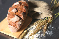 Oreilles croustillantes rustiques de pain et de blé sur une obscurité Photos libres de droits
