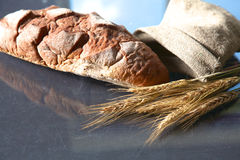 Oreilles croustillantes rustiques de pain et de blé sur une obscurité Images libres de droits