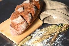 Oreilles croustillantes rustiques de pain et de blé sur une obscurité Image libre de droits