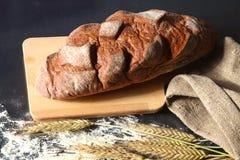 Oreilles croustillantes rustiques de pain et de blé sur une obscurité Photographie stock