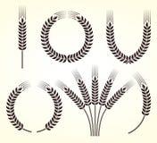 Oreilles d'ensemble de blé et de seigle Vecteur Images libres de droits