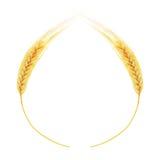 Oreilles de blé d'isolement sur le fond blanc Photo libre de droits