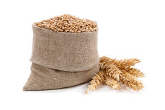 Oreilles de blé dans le sac et d'isolement sur le blanc Image stock
