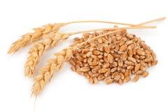 Oreilles de blé et des grains de blé images stock