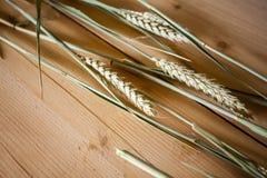 Oreilles de blé sur la surface en bois Photos libres de droits