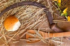 Oreilles de blé sur la toile de jute Photographie stock libre de droits