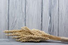 Oreilles de blé sur le Tableau en bois Gerbe de blé au-dessus du fond en bois Concept de moisson Photos stock