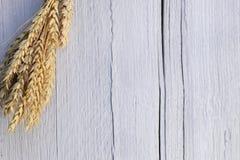 Oreilles de blé sur un fond en bois blanc Photos stock