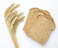 Oreilles de blé (triticum) et pain brun Image libre de droits