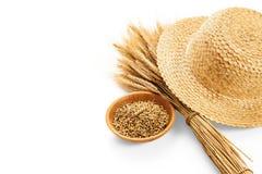 Oreilles de blé d'isolement Photographie stock